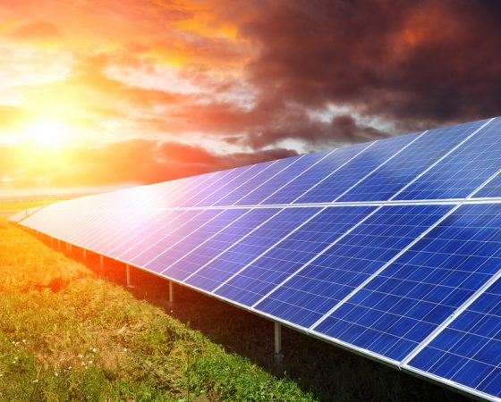 2019 Was a Record Year for Renewable Energy. Why Businesses Should Keep It Going with Solar