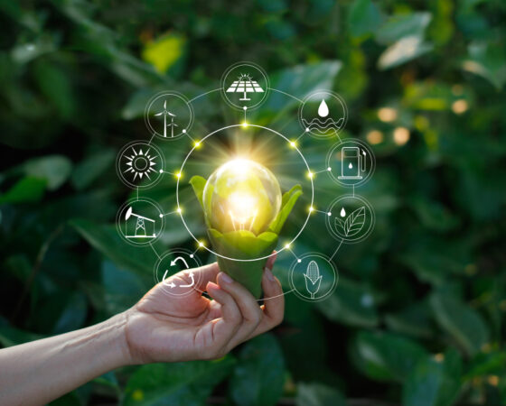 What Is a Sustainable Energy Strategy and Who Benefits